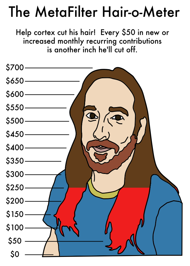 a line drawing of cortex, with his long brown hair over his shoulders, and a graduated series of lines in $50 increments running from zero at the bottom of his hair up to $700 up at the top